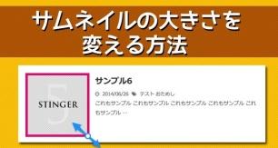 stinger5-thumbnail-top2